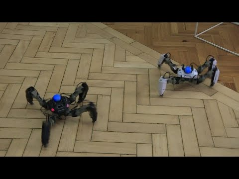 A real robot fighting enemies in a virtual world