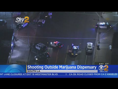 Man Shot, Killed In Front Of South LA Marijuana Dispensary