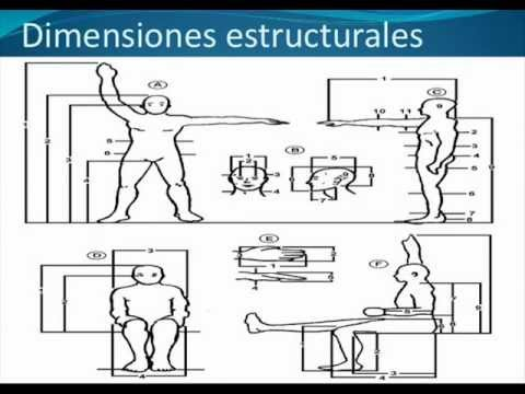 Dise o de estaciones de trabajo youtube for Estacion de trabajo