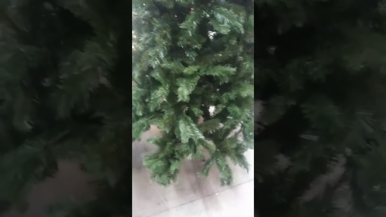 Lit A Donner how much is it 7.5 non lit donner christmas tree . - youtube