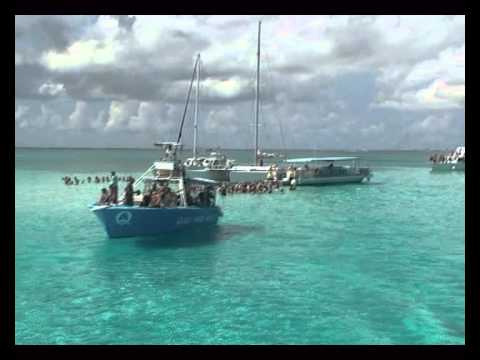 Как мы общались со стингреями. Grand Cayman. Stingray City.
