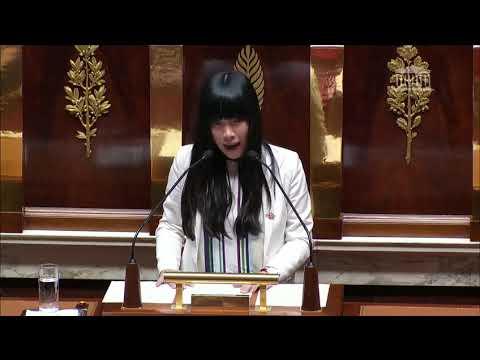 Stéphanie DO -  2ème séance - PLF2019 - Discussion générale du 9 novembre 2018