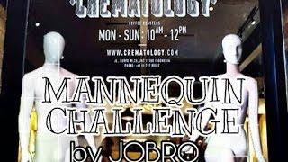 Mannequin Challenge by JOBRO