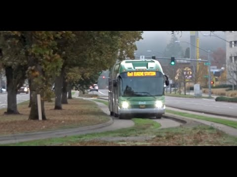 Bus Thinks Its A LightRail! BRT In Eugene, Oregon, USA 2018