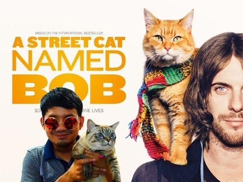 A Street Cat Named Bob บ๊อบ แมว เพื่อน คน - รีวิวหนังสไตล์ Mr.Glass