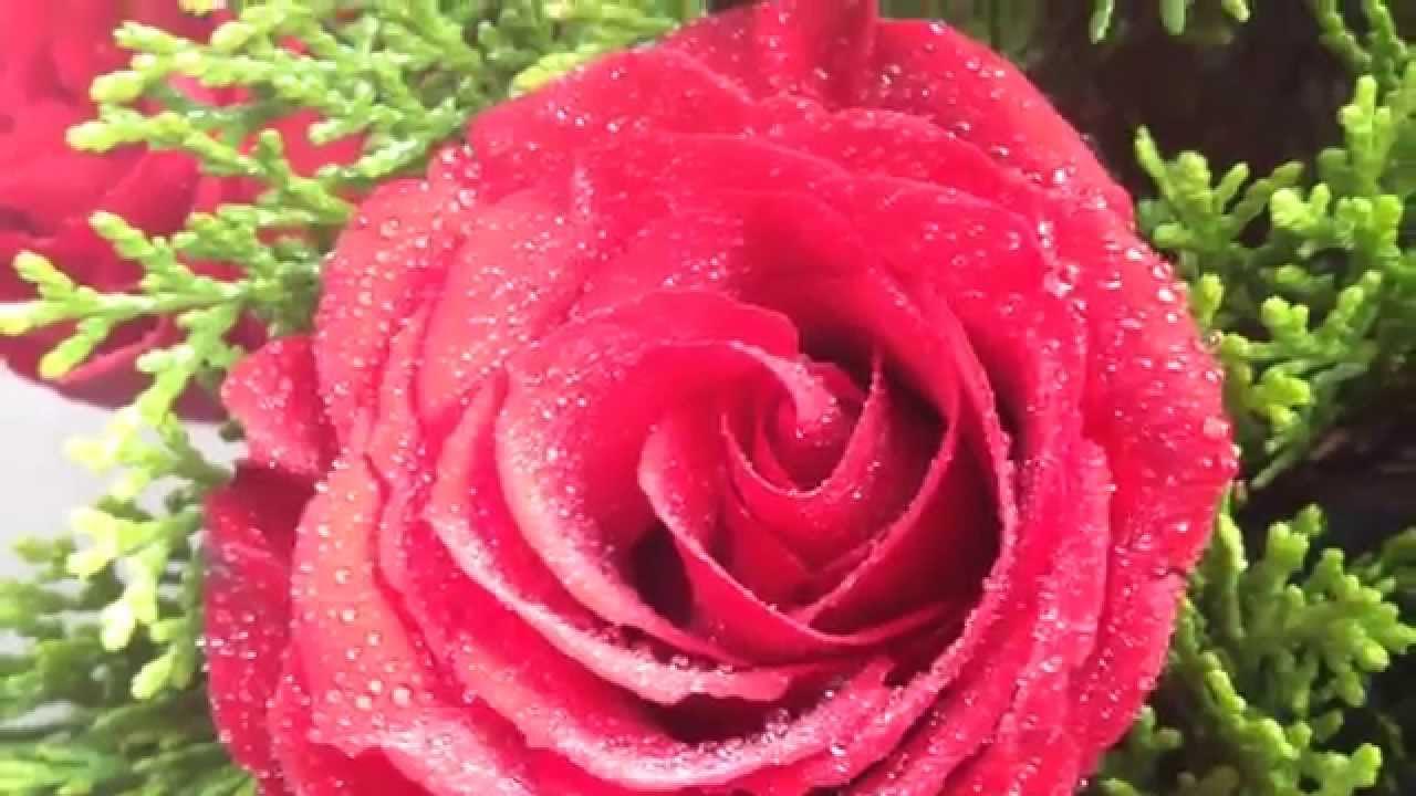 Hoa hồng, quà tặng sinh nhật đẹp, quà sinh nhật bạn gái đẹp