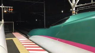 北海道新幹線  新函館北斗駅  E5系 はやぶさ38号 東京行