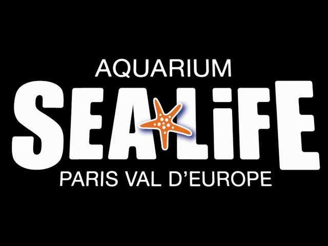 SEA LIFE Val d'Europe - Bande-annonce