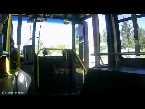 Daniel J Towsey rides a Halifax Transit bus without causing a scene Part Two