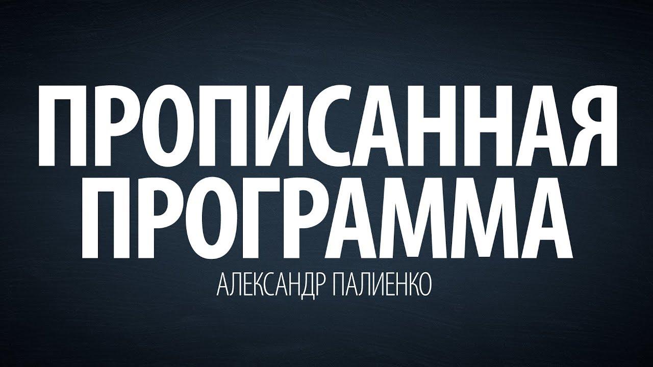 Александр Палиенко - Прописанная программа.