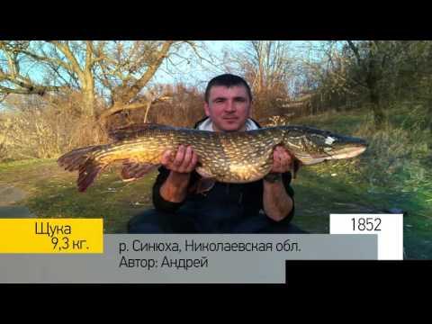 первомайск николаевской области рыбалка