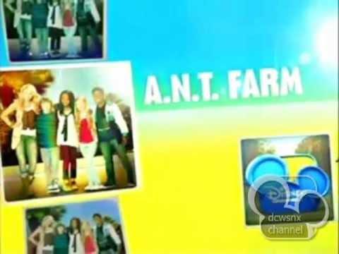 A maze n farmyard coupons