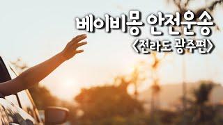베이비몽 강아지분양 전…