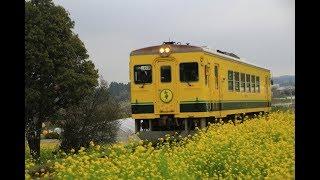いすみ鉄道ムーミン列車最終日 2019年3月31日