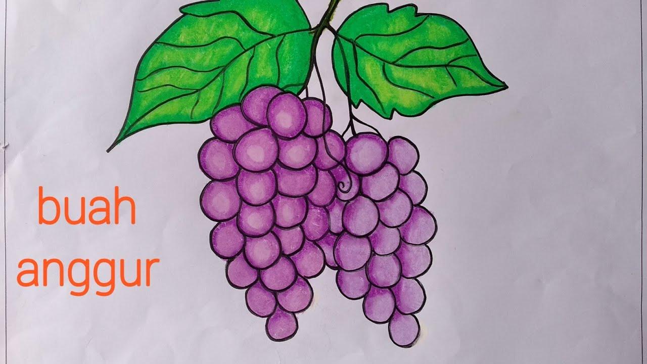 Menggambar Buah Anggur Mewarnai Dgn Gradasi Crayonoil Pastels