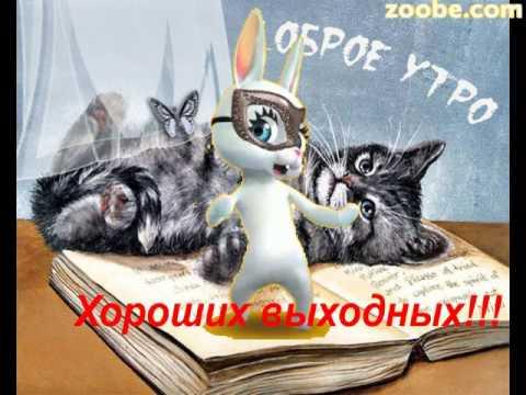 Зайка ZOOBE \
