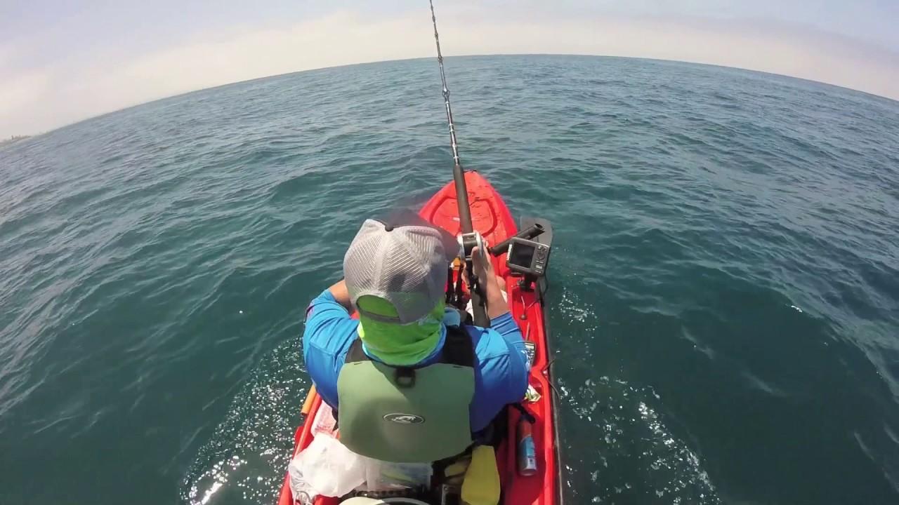 Kayak fishing la jolla early june 2017 yellowtail for La jolla fishing