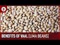 Download Benefits Of Vaal Lima Beans  वाल खाने के बेह्तरिन फायदे   Health Benefits Of Lima Beans DipasKitchen