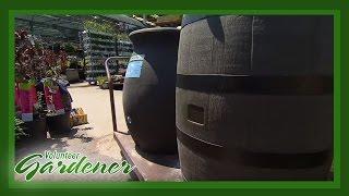 Rain Barrels | Volunteer Gardener