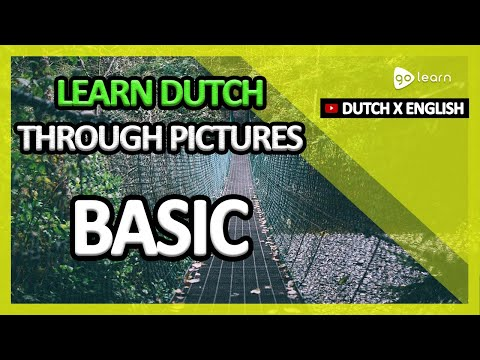 Learn Dutch Through Pictures |Dutch Vocabulary Basic | Golearn
