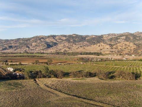 California Ranch   Bloom Ranch, Brooks California