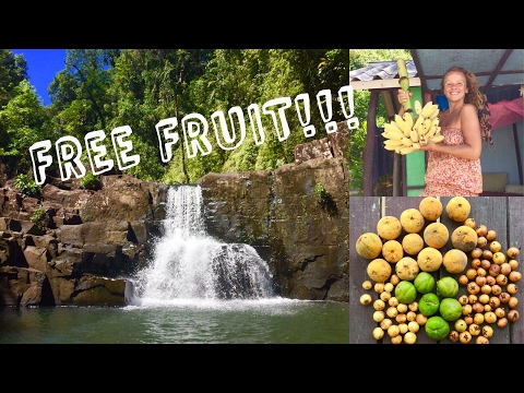 DAY IN THE LIFE OF A FRUITARIAN on a paradise island