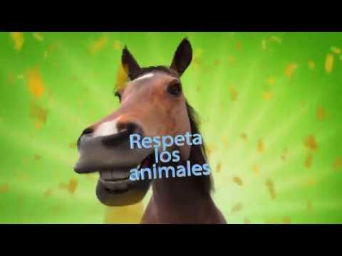 Sonido del caballo relinchando