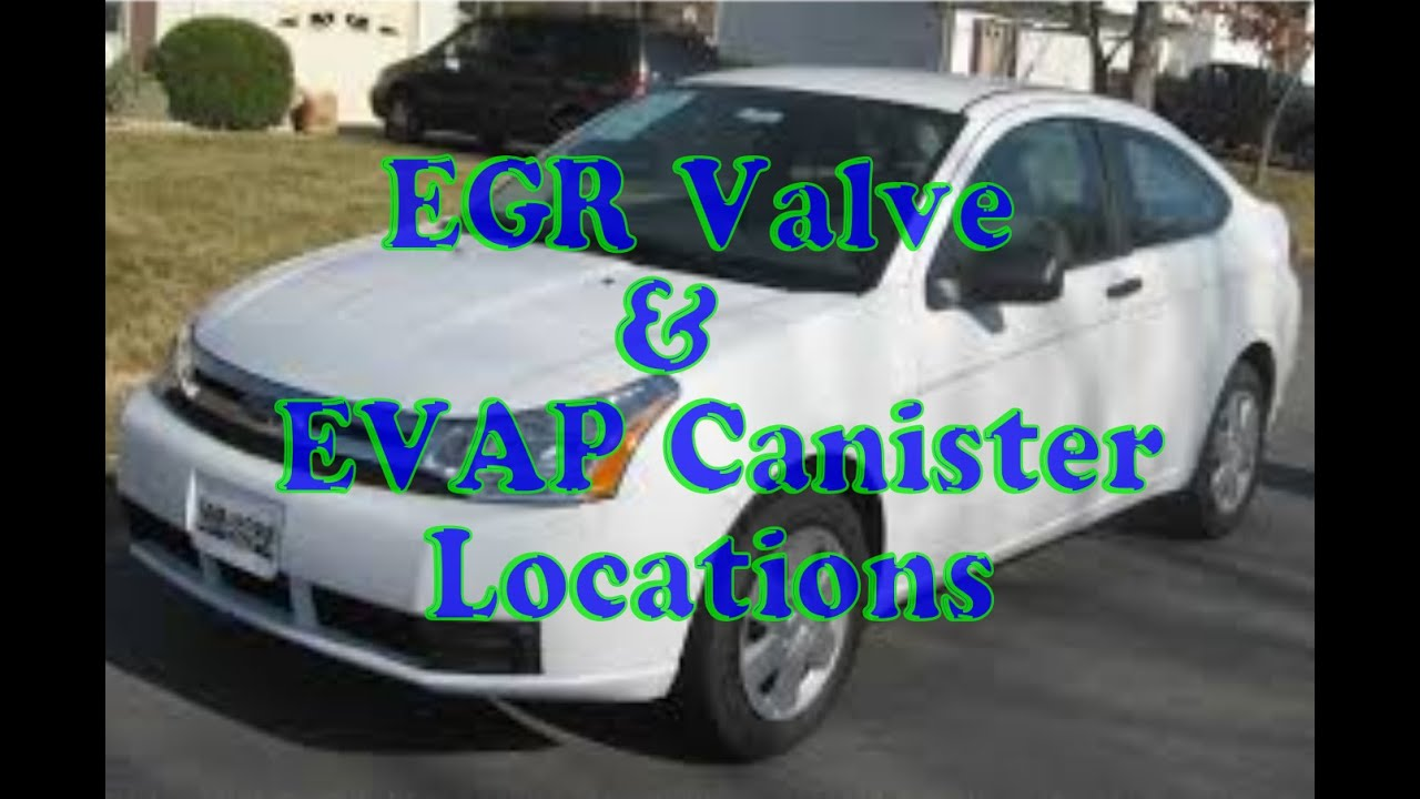 Ford Focus How To Find Egr Valve And Evap Canister Youtube