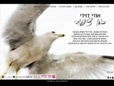 אודי דוידי-כמו ציפור
