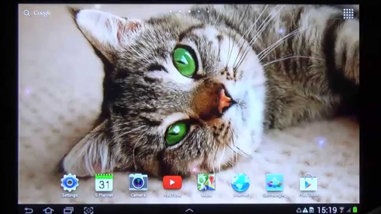 Free Cat Live Wallpaper For Android Phones And Tablets Youtube