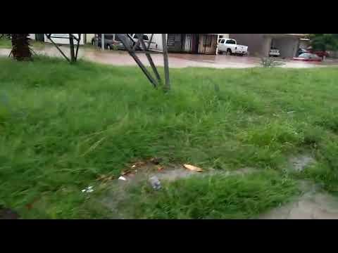 Diversos sectores de Los Mochis se inundaron