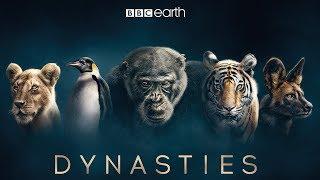 Dynasties: First Look Trailer | New David Attenborough Series | BBC Earth