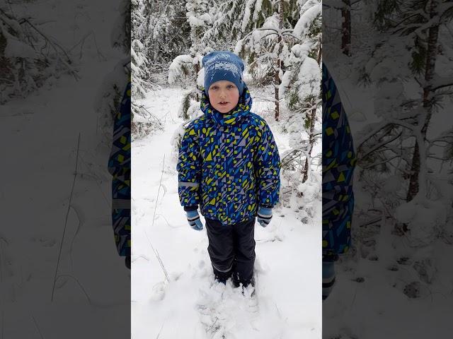 Изображение предпросмотра прочтения – СемёнЩукин читает произведение «Поёт зима, аукает...» С.А.Есенина