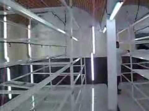 الغابة:اشغال غرف استنبات علف شعير مستنبت       YouTube