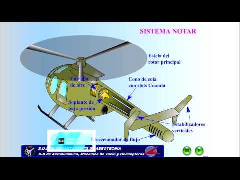 B5 L4  Funcionamiento NOTAR