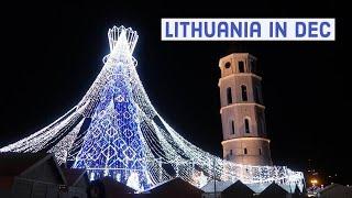 리투아니아 12월 브이로그 | 리투아니아에서 한식 먹기…