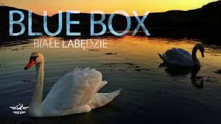 Blue Box - Białe Łabędzie [Disco Polo 🌟2🌟0🌟1🌟8🌟] (Official Audio)