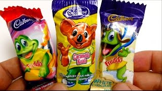 Caramello Koala & Freddo Chocolate Candy from Australia