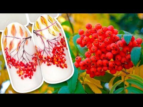 Осенний дизайн рябина ногтей