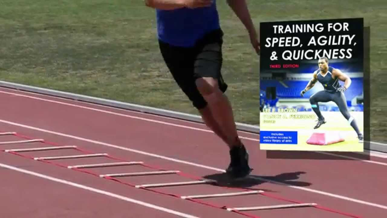 speed agility quickness training program pdf