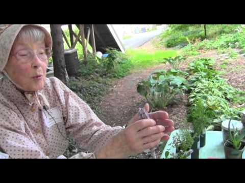 Herbs in Colonial America:  Monroe County Historical Association