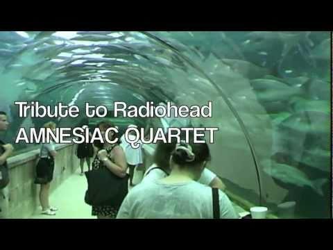 ARC VIDEO - Amnesiac Quartet - Tribute To Radiohead