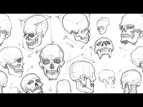 Ep01 Drawing A Skull From Different Angles Time Lapse Youtube