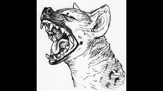 How to draw Spotted Hyena face head drawing step by step
