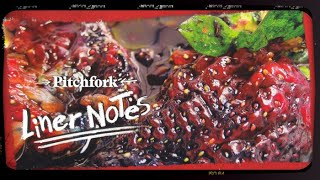 Animal Collective's Strawberry Jam (in 5 Minutes) | Liner Notes