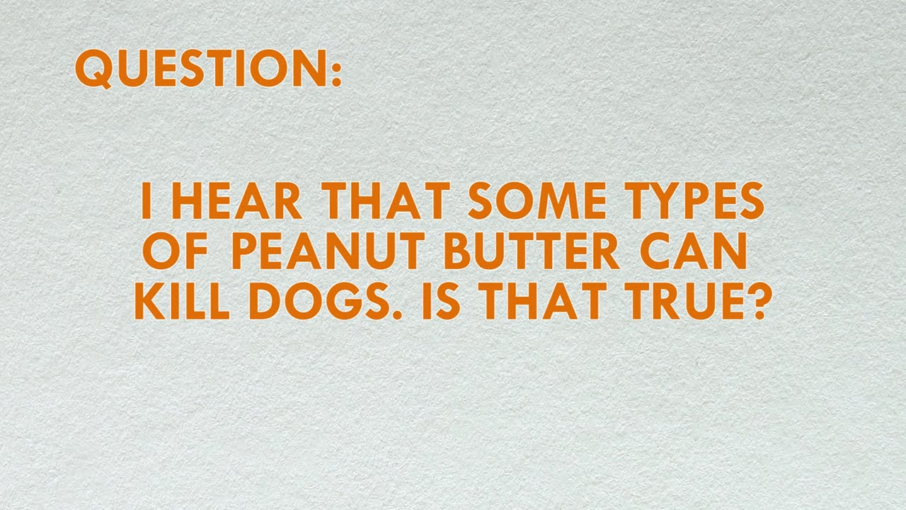 Can Peanut Butter Hurt Dogs
