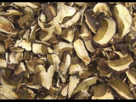 Самодельная сушилка для грибов в квартире