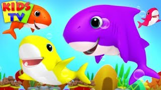 Baby Shark Song + More Baby Song & Nursery Rhyme by Kids TV