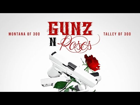 guns and roses  montana 300