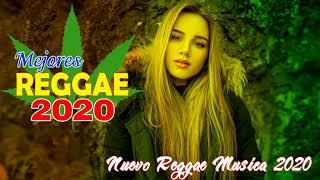 Nuevas Canciones De Reggae 2020 - Mejores Canciones Populares De Reggae 2020 - Exitos De Reggae 2020